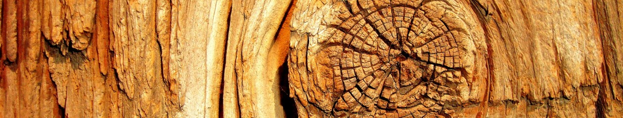 Trædrejeriet – Træknuden